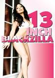 13_inch_blackzilla_front_cover.jpg